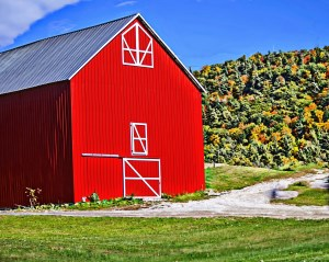 The changing of seasons causes the paint on the barns weather. This means farm owners must re-pai...